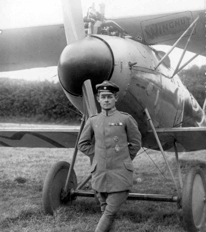 Albatros D.V 1154_17 Max Ritter von Muller. 1st August 1917 (2-06).jpg