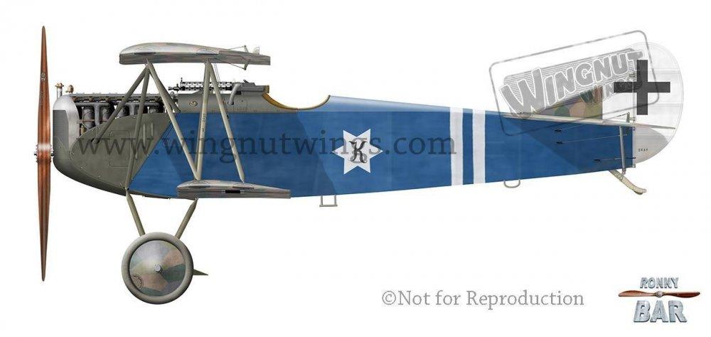 D_Fokker D.VII, Reinhold von Benz Jasta 78b, August 1918 (1 victory).jpg