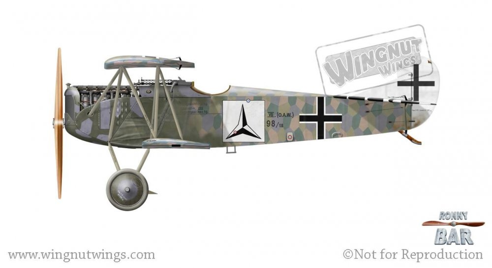 Fokker D.VII (OAW) 4198_18, Karl Ritscherle, Jasta 60, mid to late 1918 (8 victories).jpg
