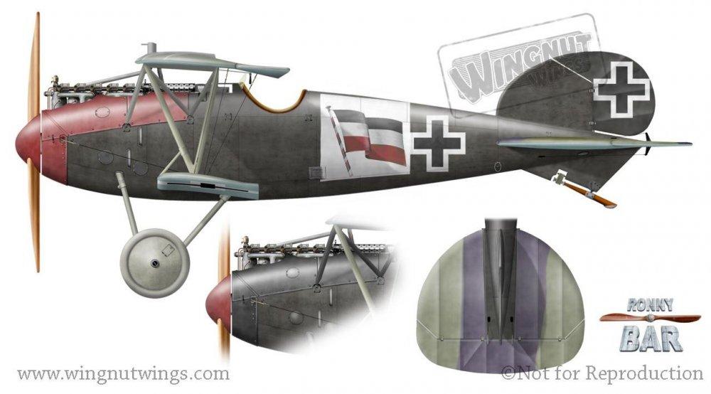 Albatros D.Va, Max Nather, Jasta 62, mid 1918 (26 victories)..jpg