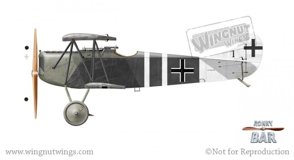 Fokker D.VII (Alb) 571_18, Adolf Gutknecht, Jasta 43, July 1918 (8 victories).jpg