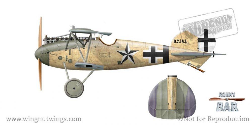 C - Albatros D.Va 7343_17, Kurt Jentsch, Jasta 61, June-August 1918 (7 victories).jpg