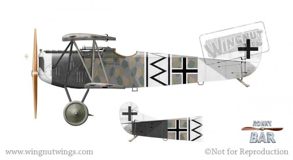 Fokker D.VII F, Otto Loffler(), Jasta 2, Late 1918 (15 victories).jpg
