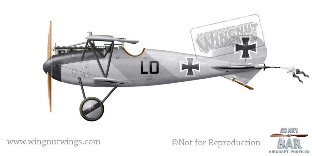 Albatros D.V, Ernest Udet, Jasta 37, mid-late 1917 (62 victories).jpg