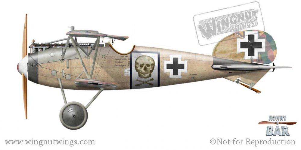 D_Albatros D.Va (OAW), Hans von Gossel, Jasta 71, mid 1918 (1 victory).jpg