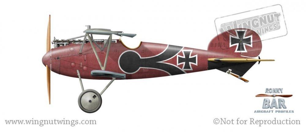 Albatros D.V 1154_17, Max Ritter von Muller, Jasta 28, late 1917 (36 victories).jpg