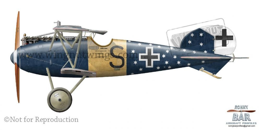 Albatros D.Va OAW 6633_17, Michael Sigmann, Jasta 78b, April-August 1918.jpg