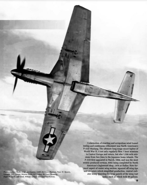 P-51 bottom view.JPG