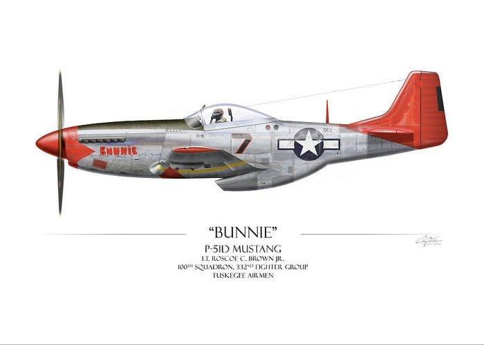 tuskegee-airmen-p-51-mustang-white-background-art-print-craig-tinder.jpg.95a7a32ec3d6b939112ed14fc16a0cb4.jpg