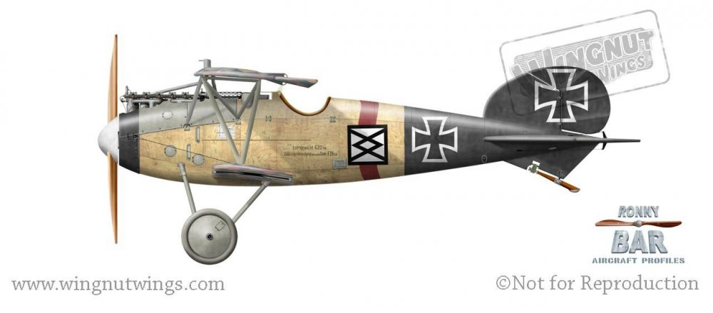 Albatros D.V, Karl Meierdirks, Jasta 12, July-August 1917 (2 victories).jpg