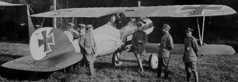 Albatros D.V Hans Auer - Jasta 32b (AL0177-01).jpg
