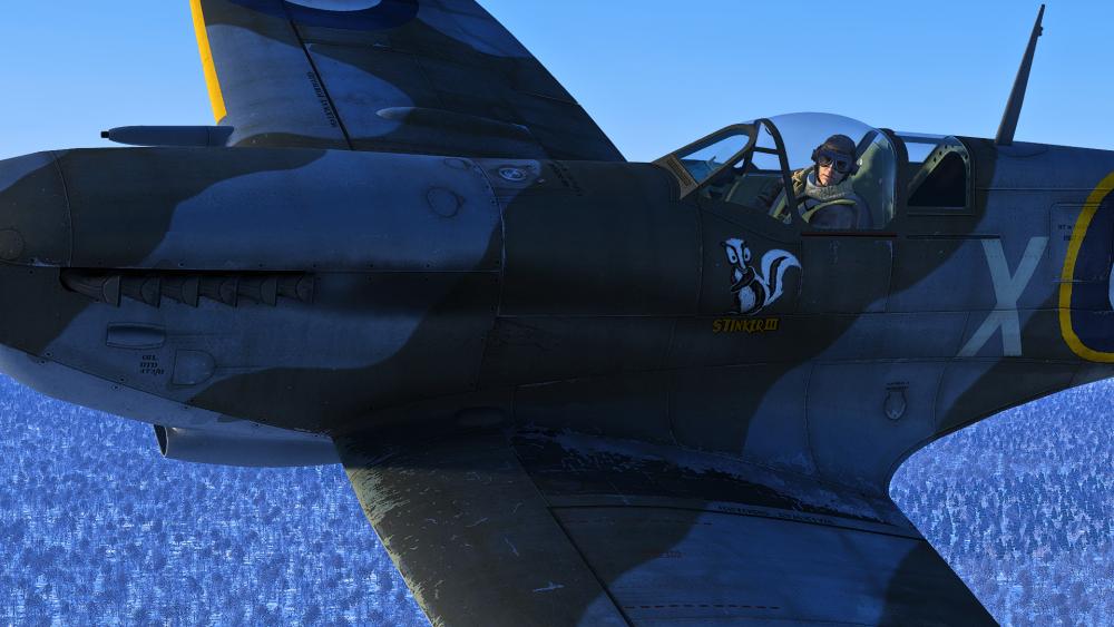 Spitfire Pilot.png