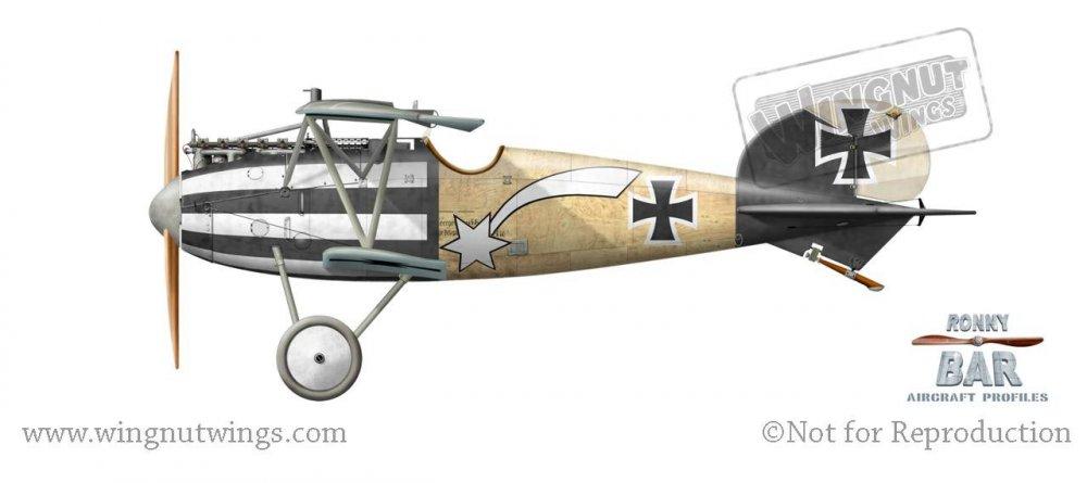 Albatros D.V, Hans Auer, Jasta 32b, September 1917 (5 victories).jpg