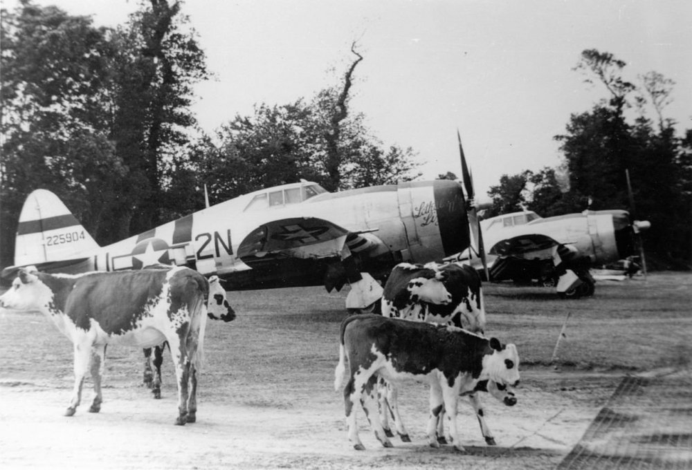 50th_Fighter_Group_P-47_Thunderbolts.jpg