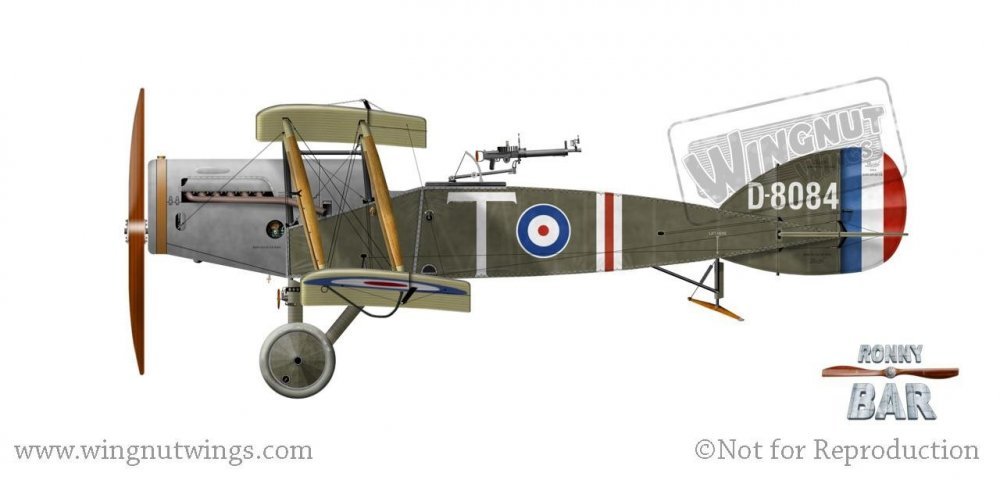 D8084 'T', Z Flight 34 Sqn, Italy, early 1918.jpg