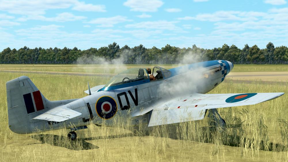 Mustang QVJ.png