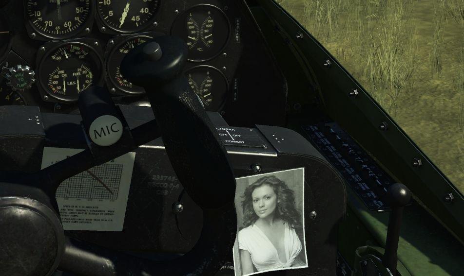 Cockpit_Photo_P38-2.jpg.c487c904b6e7de8212754a7f9615e495.jpg