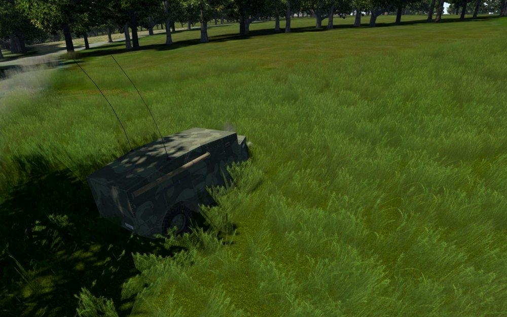 GRASS.thumb.jpg.7f15596d713257baaea46e250848ee66.jpg