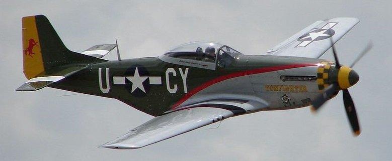 The_North_American_P-51_-528256476-.jpg.e682169a78dfe7b114b8ffbdf4bb8f14.jpg