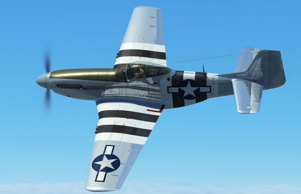 Warbird.thumb.jpg.99c5f4aa2849857f9b4d36213dff4ad1.jpg