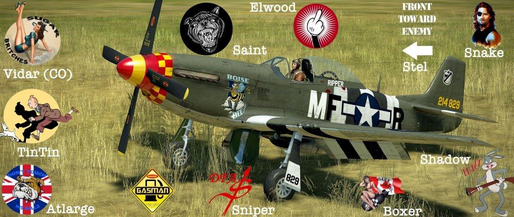 P-51-Squad.jpg