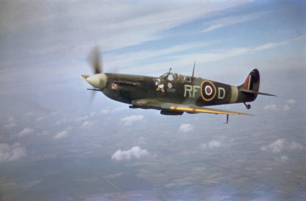 Spitfire_V_316.jpg