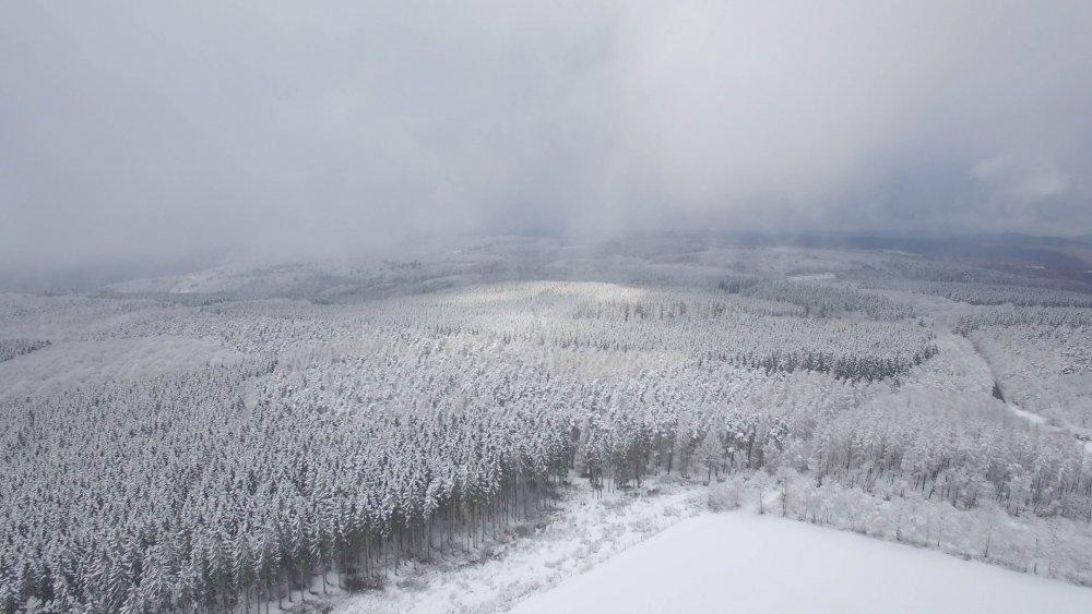 Landschaft 2.jpg