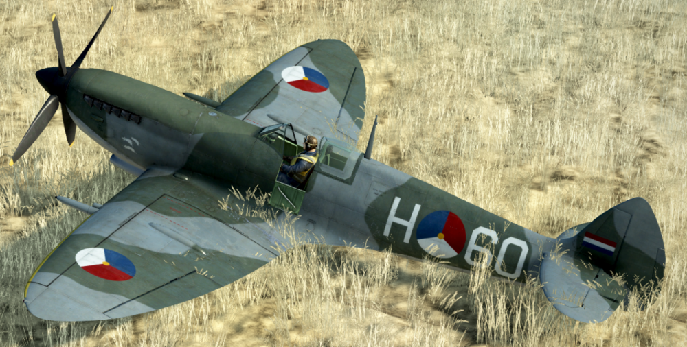 Spit wing roundels mistake.png