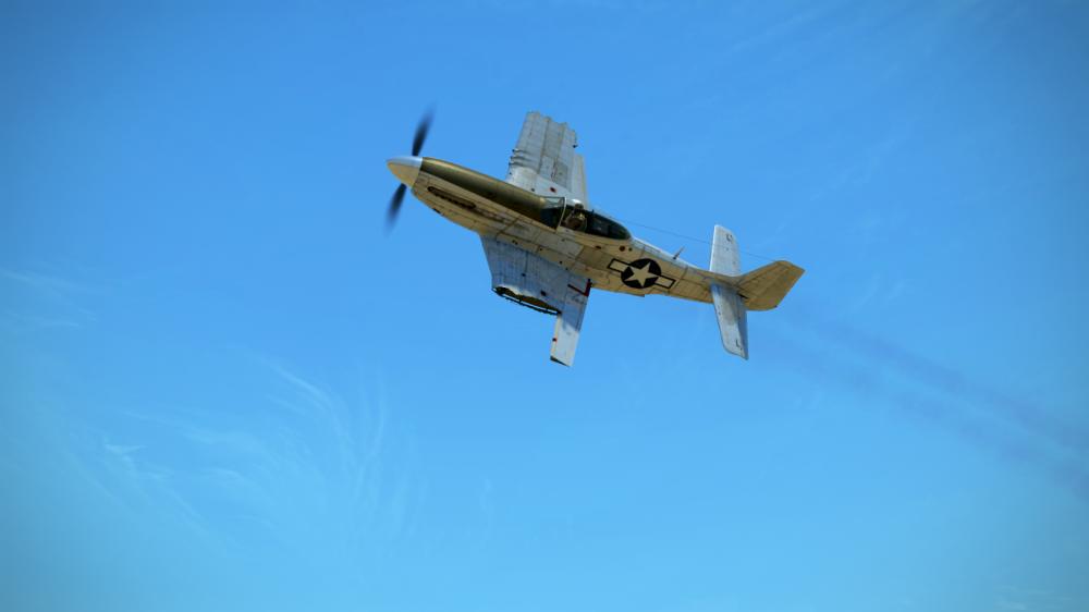 P 51 racing.png