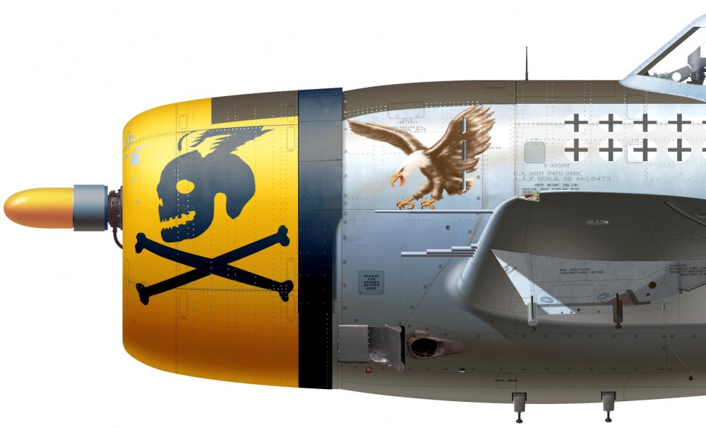 p-47.cu.12.jpg