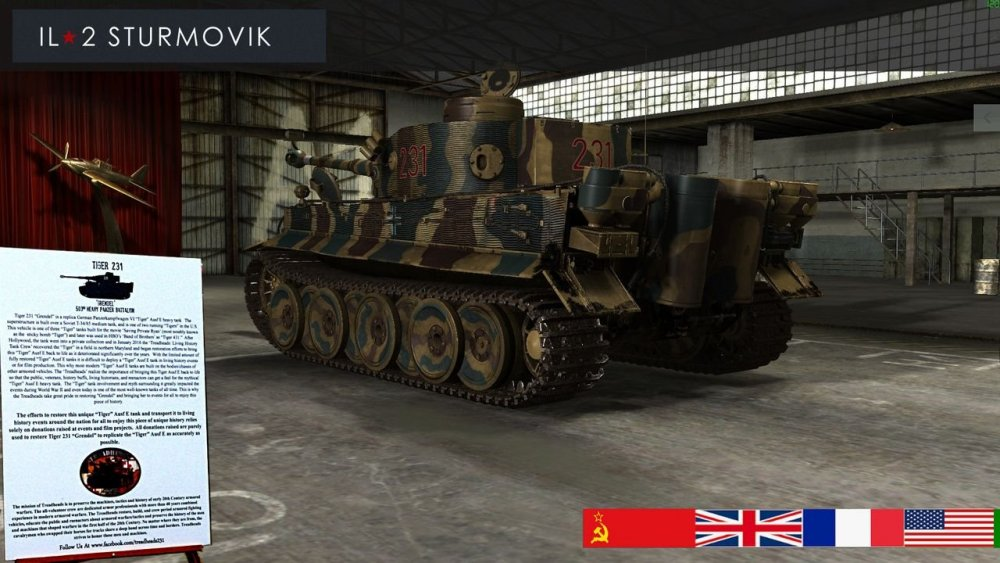 Tiger 231 B.jpg