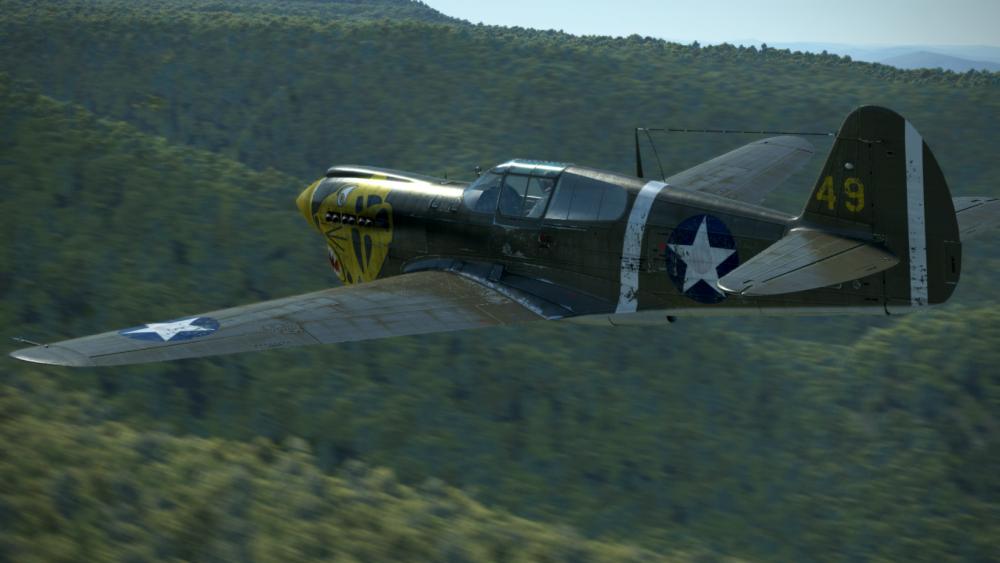 P-40 low.png