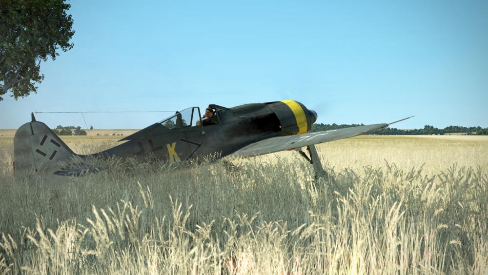 Fw 190 e run.png
