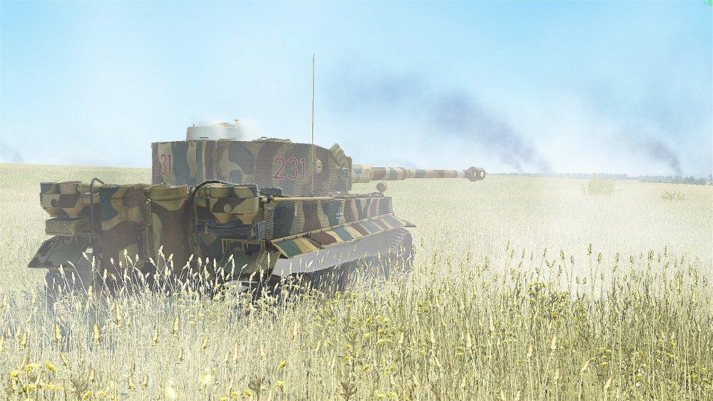 Tiger 231 D.jpg