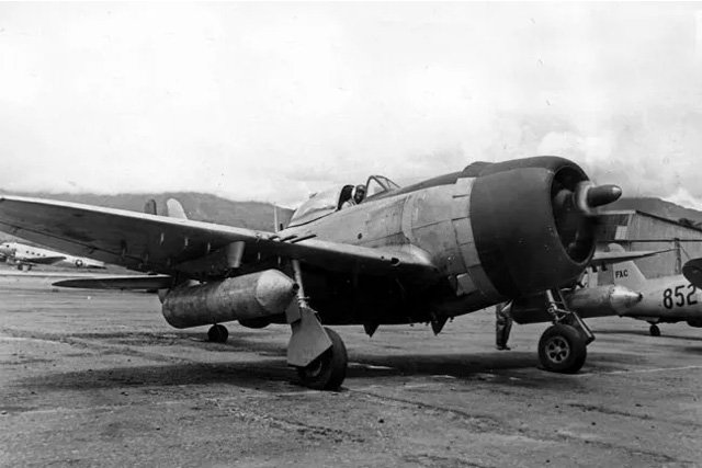 P-47D_FAC.jpg.732ac94dd610dd92cf4e8826ee8ed1f9.jpg
