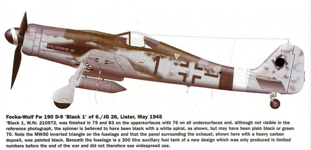 Black_1_II_JG_26.jpg
