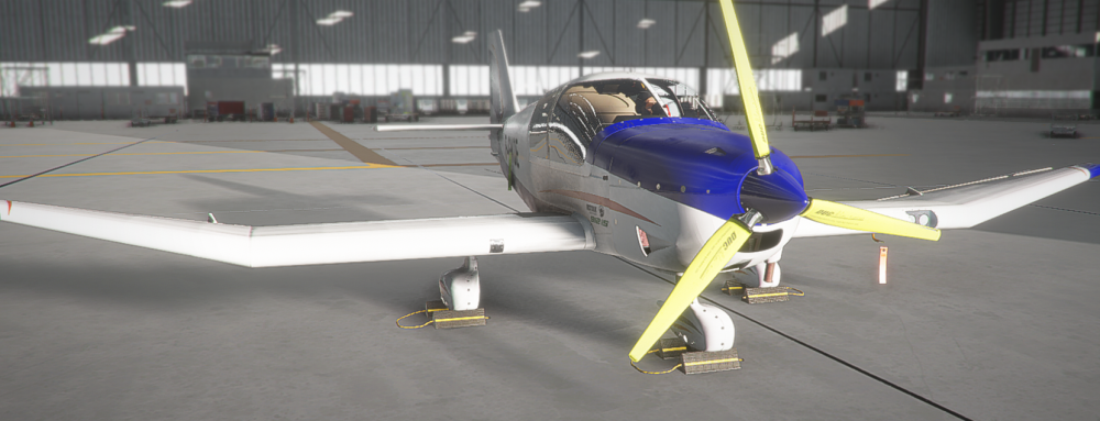 Plane06_Large.thumb.png.9bd62932640cd6f4f28d8eef68fe8095.png