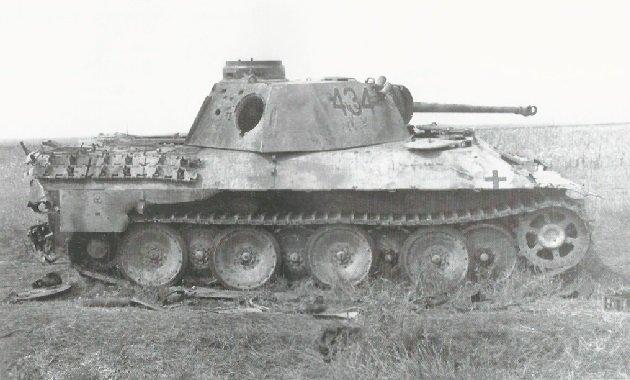 pantherd-29.jpg