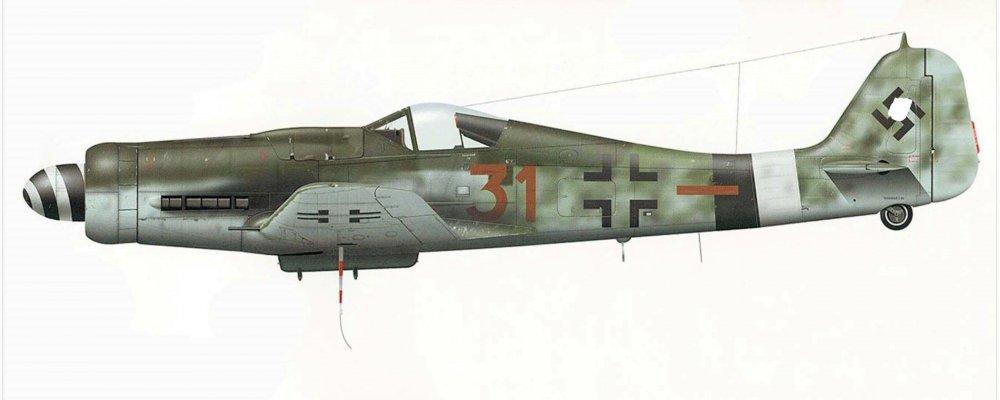 Focke-Wulf-Fw-190D9-7.JG26-Brown-31-Wlater-Stumpf-Germany-Feb-1945-Eagles-Illustrated-P37 (2)_LI.jpg