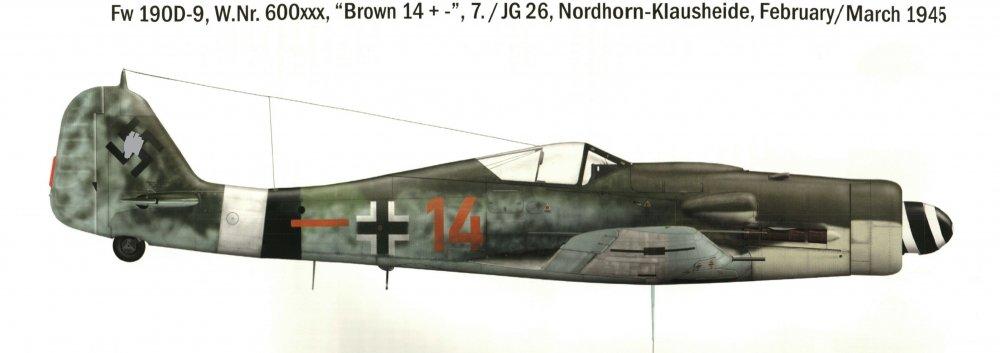 IMAG0051 Brown_ 14_JG26_JAPO_LI (2).jpg