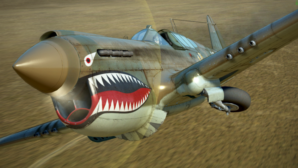 P 40 FT.png