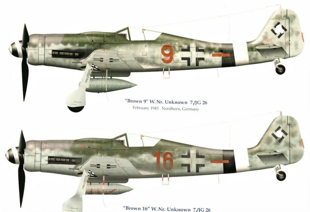 IMAG0034 FW-190D-9 Brown_ JG26_LI.jpg