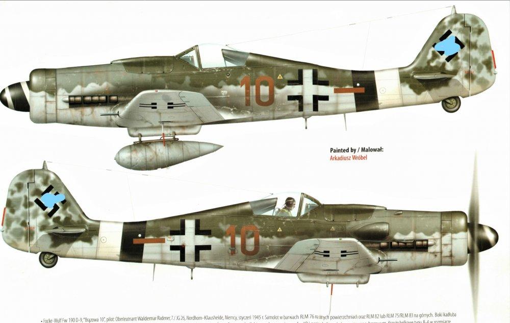 Brown 10_7_JG26 _Kagero.jpg