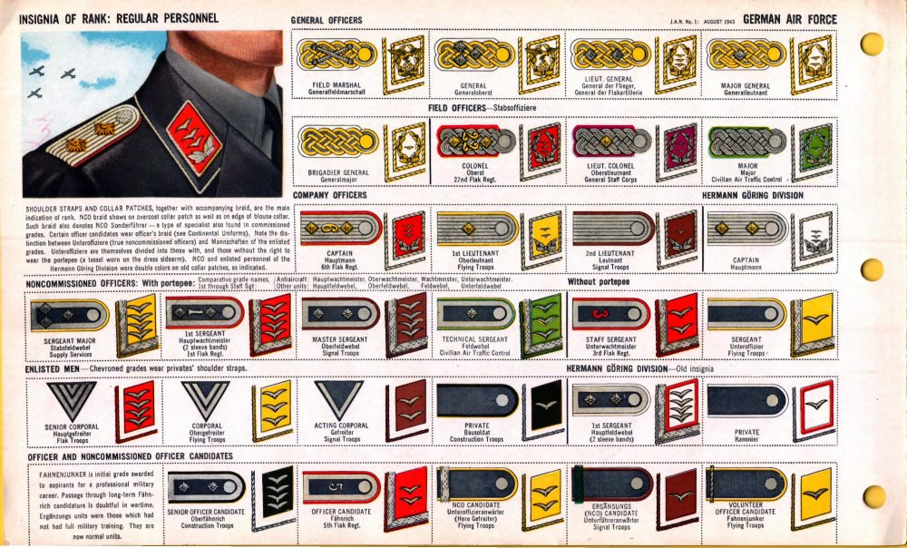 ONI_JAN_1_Uniforms_and_Insignia_Page_036_German_Air_Force_Luftwaffe_WW2_Insignia_of_rank_Regular_per-_Field_recognition._US_public_doc._No_known_copyright.thumb.jpg.88626960fa18f0311821c9e39059d635.jpg