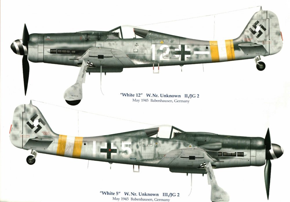 JG 2_White 12_5 FW-190D-9_MP4 resized.JPG