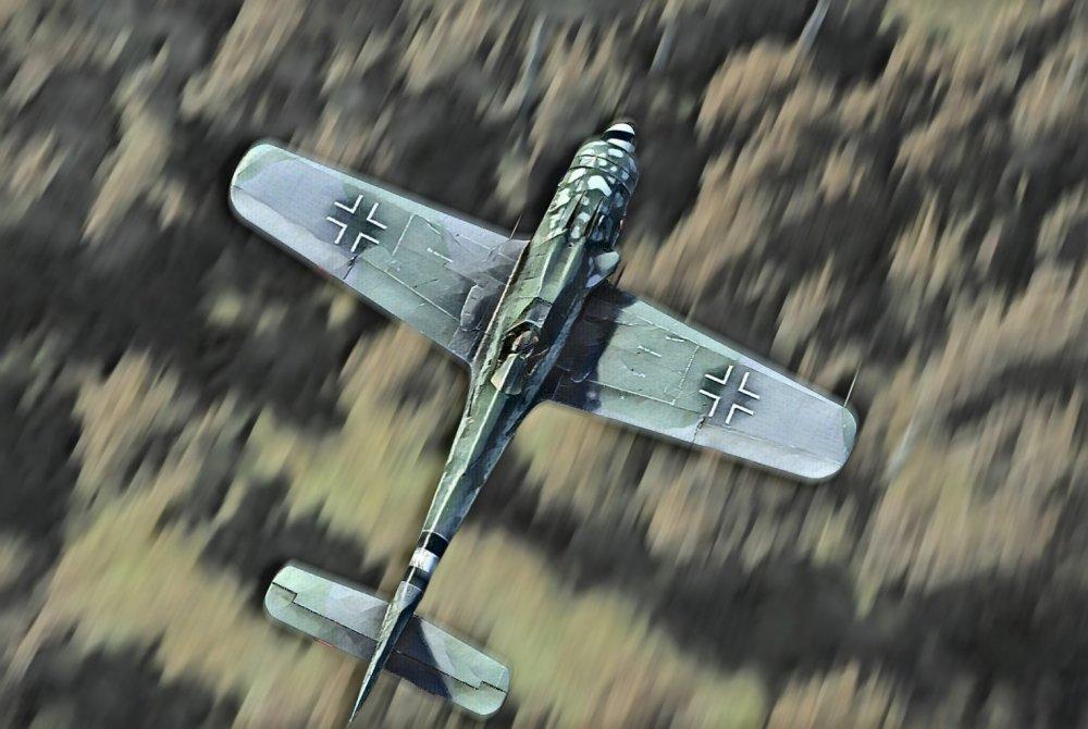 Fw-190_D9_paint.jpg