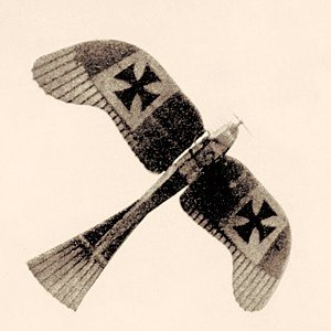 300px-Rumpler_Taube_monoplane.jpg.bac19fb8dd306c5bc663fe212b9d47da.jpg