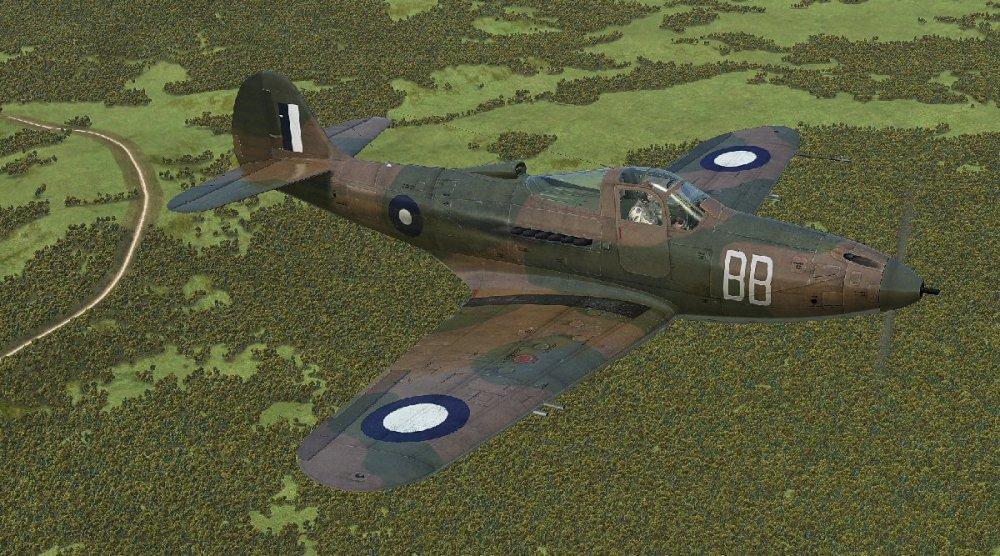 RAAF P-39D_1.jpg