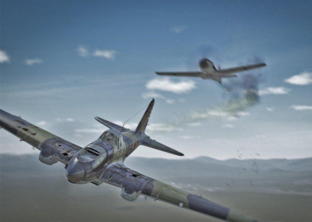 Il-2 Down.jpg