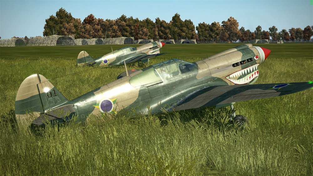 P-40E 02.jpeg